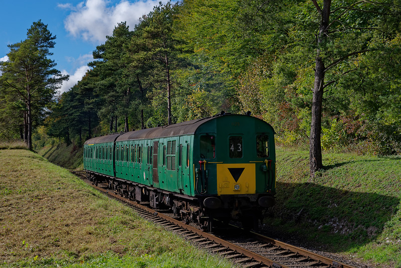 1125 exits the pine trees, with the 11:45 Alresford - Alton on 15th October 2016.