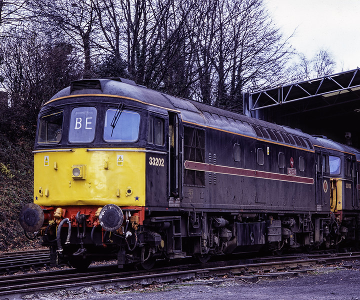 33202 and 33103 at Ropley, on 6th December 2004.  Scanned Transparency.