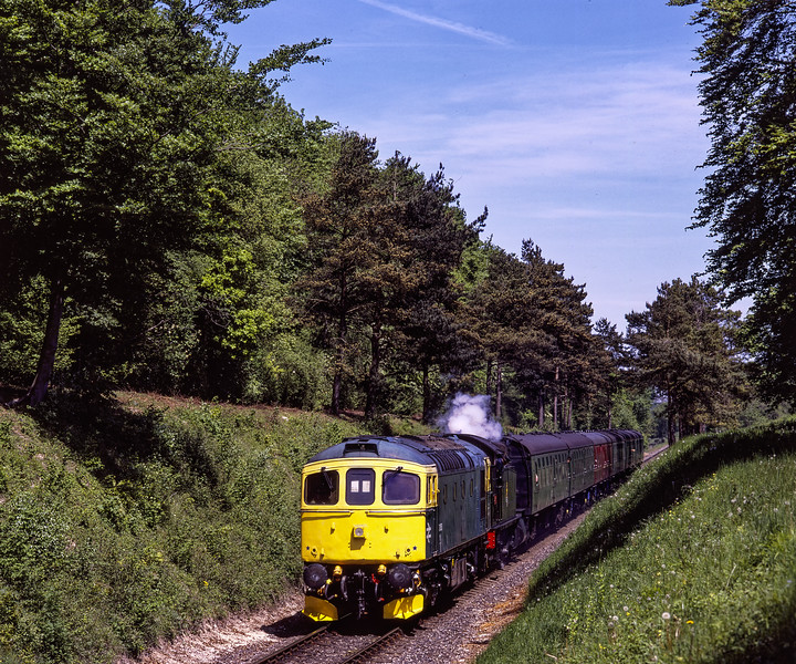 33053 and 5224, passing through the pine trees, with the, 11:55 Alton - Alresford, <br /> on 22nd May 2010.  Scanned Transparency.