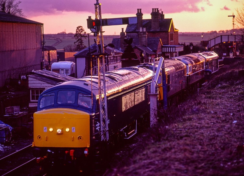45132, 33116, 27007 and 25067 stabled overnight at Ropley, during the Diesel Gala <br /> on 5th March 1994. Scanned Transparency.