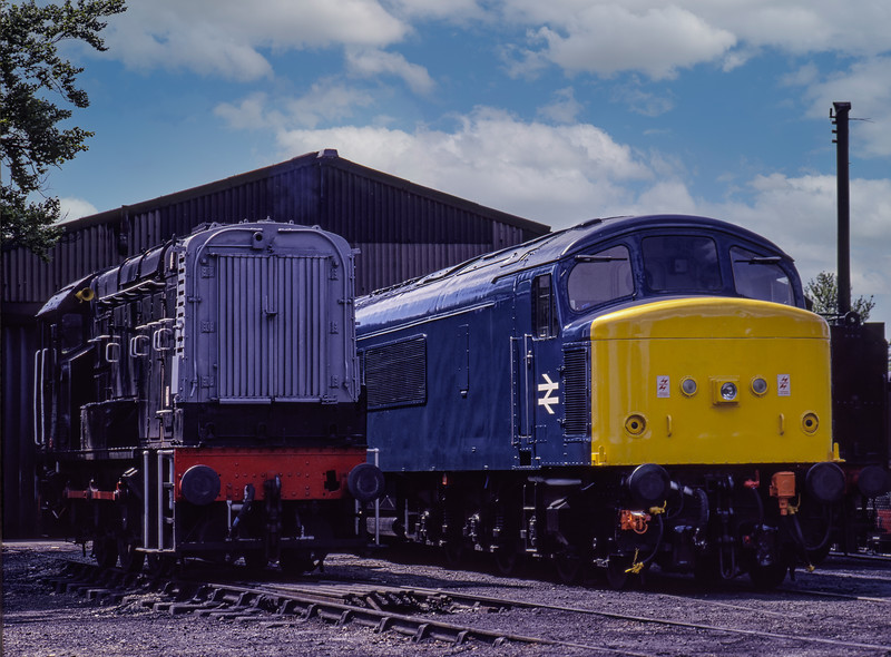 08288 and 45132 in the yard at Ropley, on 15th May 1994. Scanned Transparency.