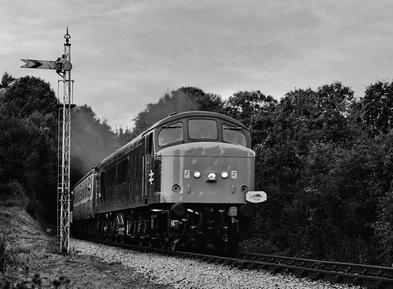 """On 1st October 1994, 37420 arrived at Alton with 1Z67, the 06:45 Manchester Picadilly - Alton, via Paddington. This was """"The Hampshire Hog II"""" ran by Pathfinder Tours. 45132 is seen here passing the Alresford Distant signal, with a special working for the tour participants. Scanned Negative."""