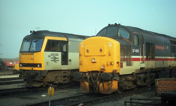 37405 in the company of 60022 on Thornaby TMD.