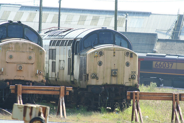 37505 on Ayr shed. 09.06.07