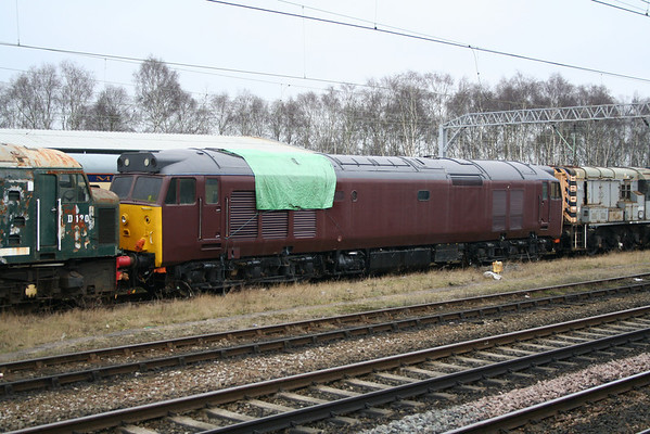 50008 in Crewe carriage sidings. 18.03.06