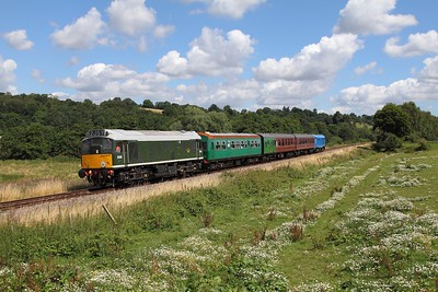 D5185 (25035) tnt 31289 on the 2J63 1120 Tunbridge Wells West to Eridge at Pokehill farm on the 6th August 2016