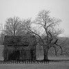 Old Barn - Tennessee #385