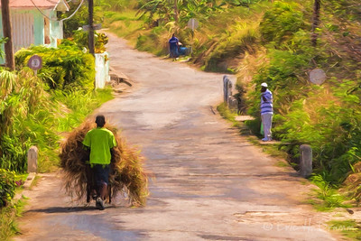 Going down the Road, Barbados