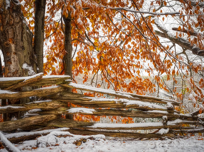 First Snow II, Oro-Medonte, Ontario