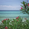 Gulf breeze taken by nature photographer Jerry Dalrymple near Destin, FL