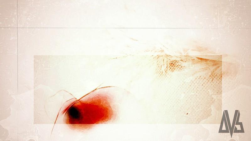 'canvas'