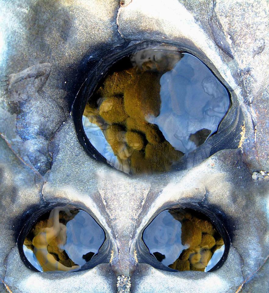 Eyes of the Yuba