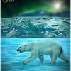 Polar Borialis