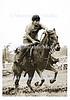riding horse sep
