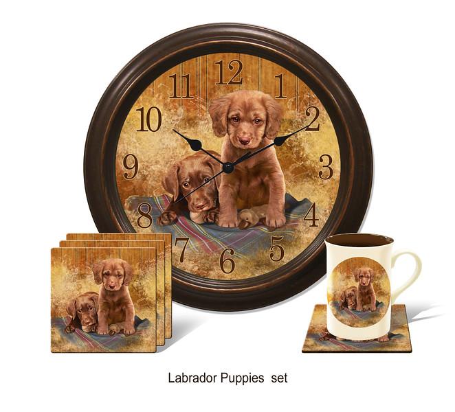 Labrador series