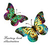 Butterfly book illustrations