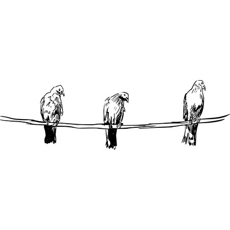 three birds on a rope