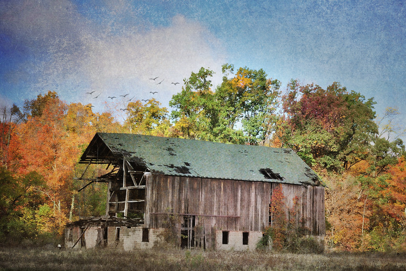 The Old Mack Barn in Autumn