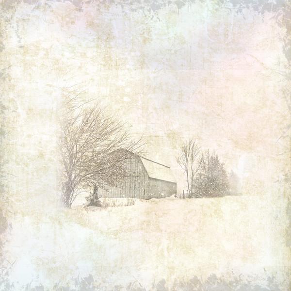 Ruthie's Barn