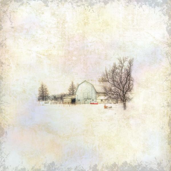 Winter Rest II