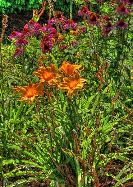 More Flower Power