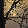 Vampire BedTime....Halloween SunRise