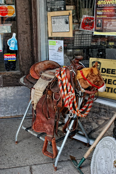 Cowboy Training Horse