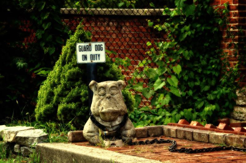 Rocky Stonedog ....on duty 24/7