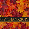 48258103 - happy thanksgiving greeting, fall leaves background and text happy thanksgiving