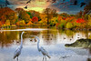 Autumn of the Great Egrets and the Cryptic Alligator