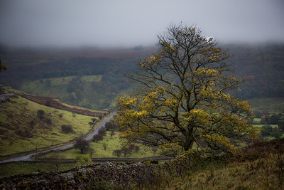 Yorkshire Dales - Second Place Assigned