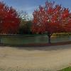 Janiece Kinzle Glenwood Lake Park