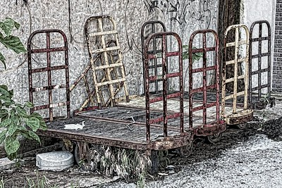 Abandoned Carts - First Place Creative