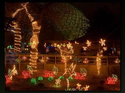 pc-zoo lights-