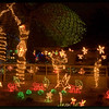 pc-zoo lights-
