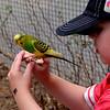 pc-my little friend-