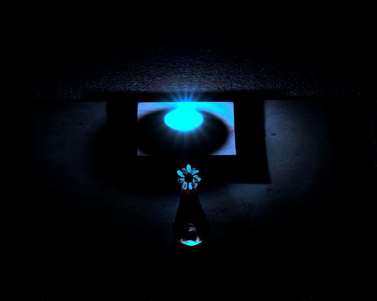 oc-The Light Divine