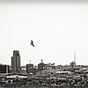 om-gliding