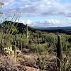oc-Desert View