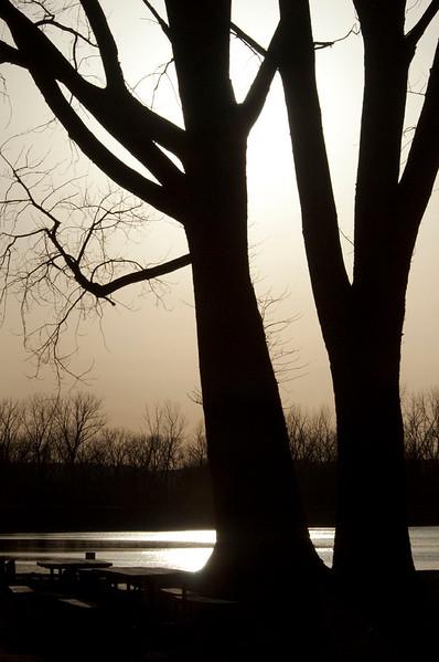 nc-Park Sunset