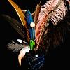 ag-Feathers & Vase