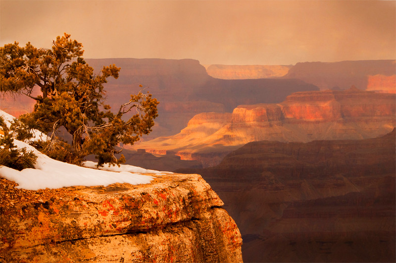 nc-Snow Squall Grand Canyon