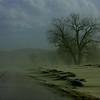 pc-Flood Silt