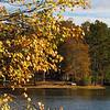 oc-Autumn Tranquility