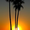 oc-Laguna Sunset by Sue Baxter 1st.jpg