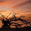 nc-Jekyll Island Sunrise by Martha Barker tie 2nd.jpg