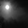am-Moonglow