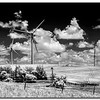 om-Windmills by Don Loeske 2nd