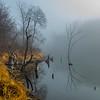 nc-Morning Fog 1st Steve Barker