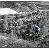 oc-Young Ski Jumper 3rd Larry Headley